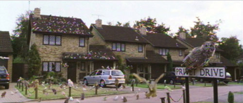 The many owls descending upon Privet Drive