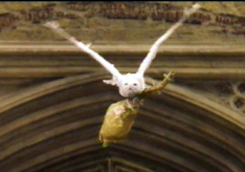Hedwig delivering Harry's Nimbus 2000